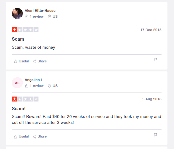 A screenshot showing the second review on Trustpilot.